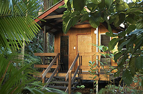 Cape Trib Beach House - Tourism Caloundra