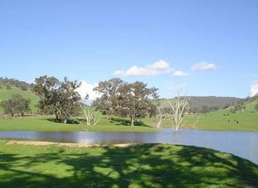 Hillview Farmstay - Tourism Caloundra