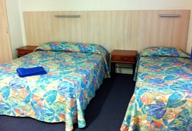 Mango Tree Motel - Tourism Caloundra