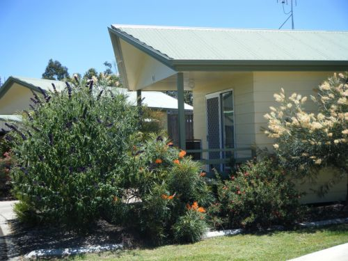 Pepper Tree Cabins - Tourism Caloundra