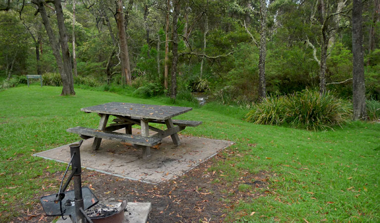 Chaelundi campground - Tourism Caloundra