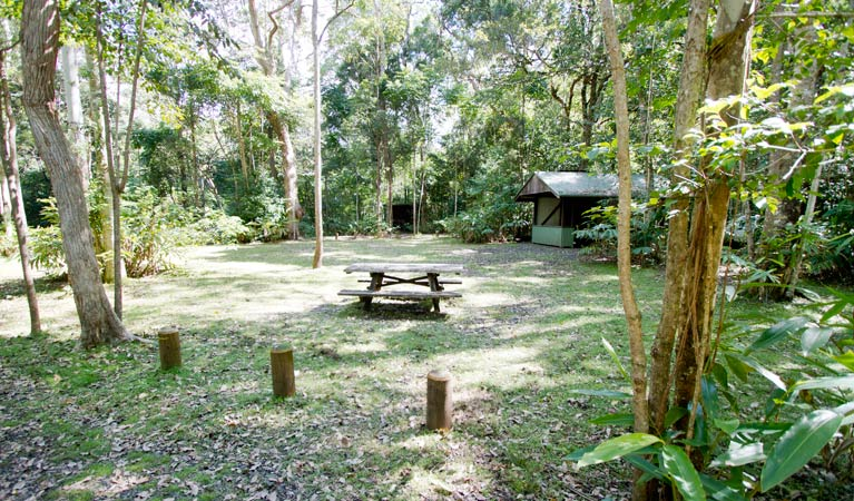 Iron Pot Creek campground - Tourism Caloundra