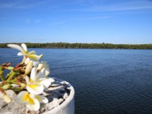 The Fishing Haven Holiday Park - Tourism Caloundra
