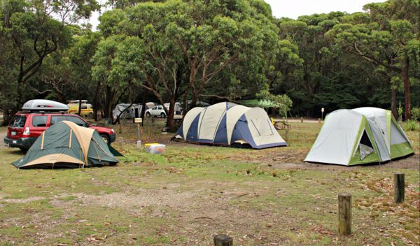 Pretty Beach Campground Murramarang National Park - Tourism Caloundra