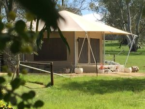 Boongarrie Luxury Tent - Tourism Caloundra