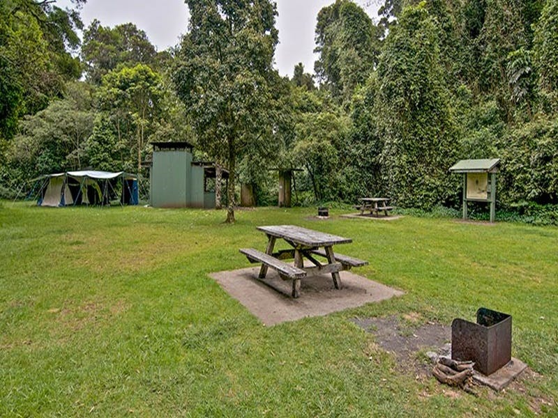 Forest Tops campground - Tourism Caloundra