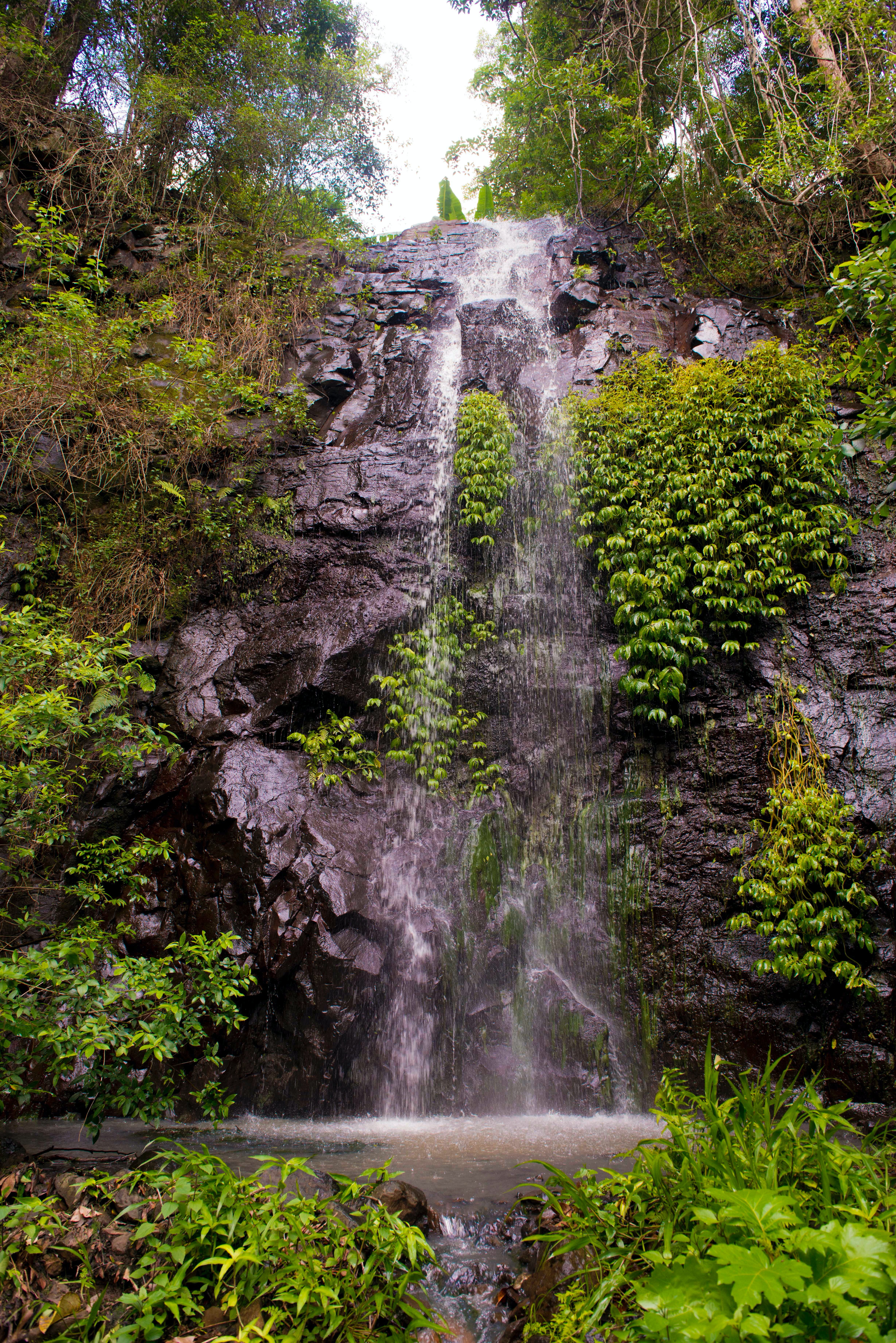 Nimbin Waterfall Retreat - Tourism Caloundra