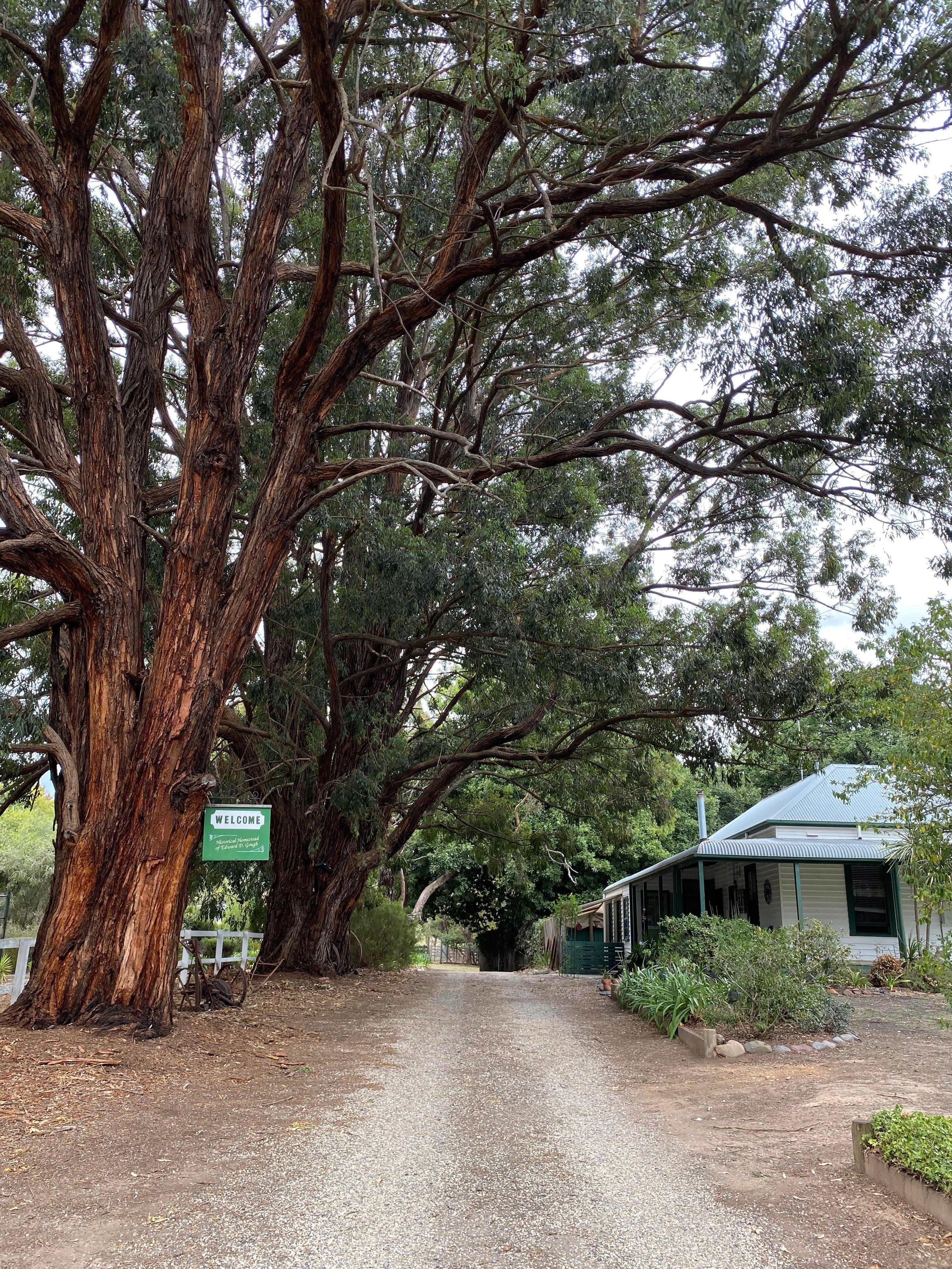 Fernleigh Accommodation - Tourism Caloundra