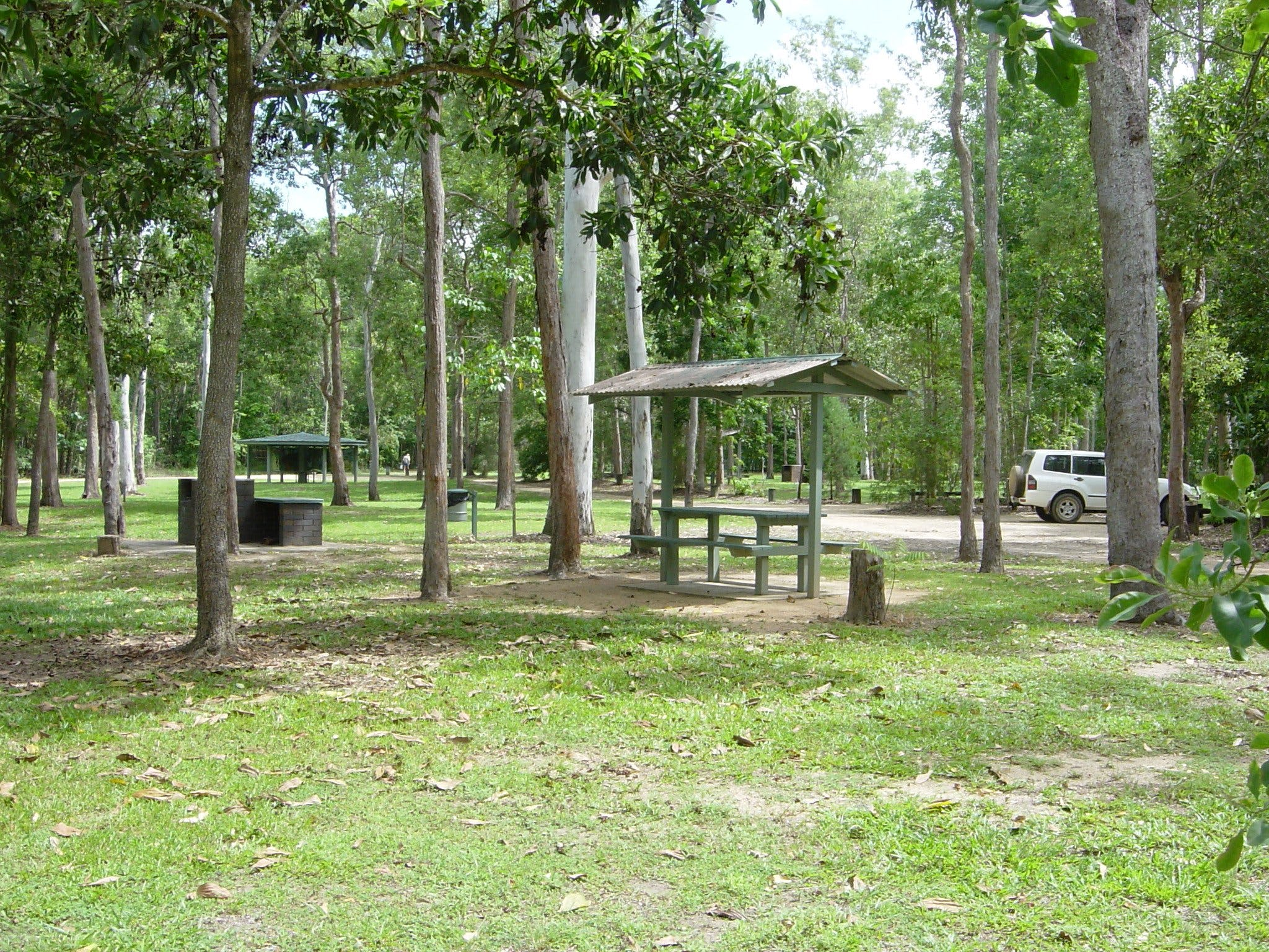 Broadwater camping area Abergowrie State Forest - Tourism Caloundra