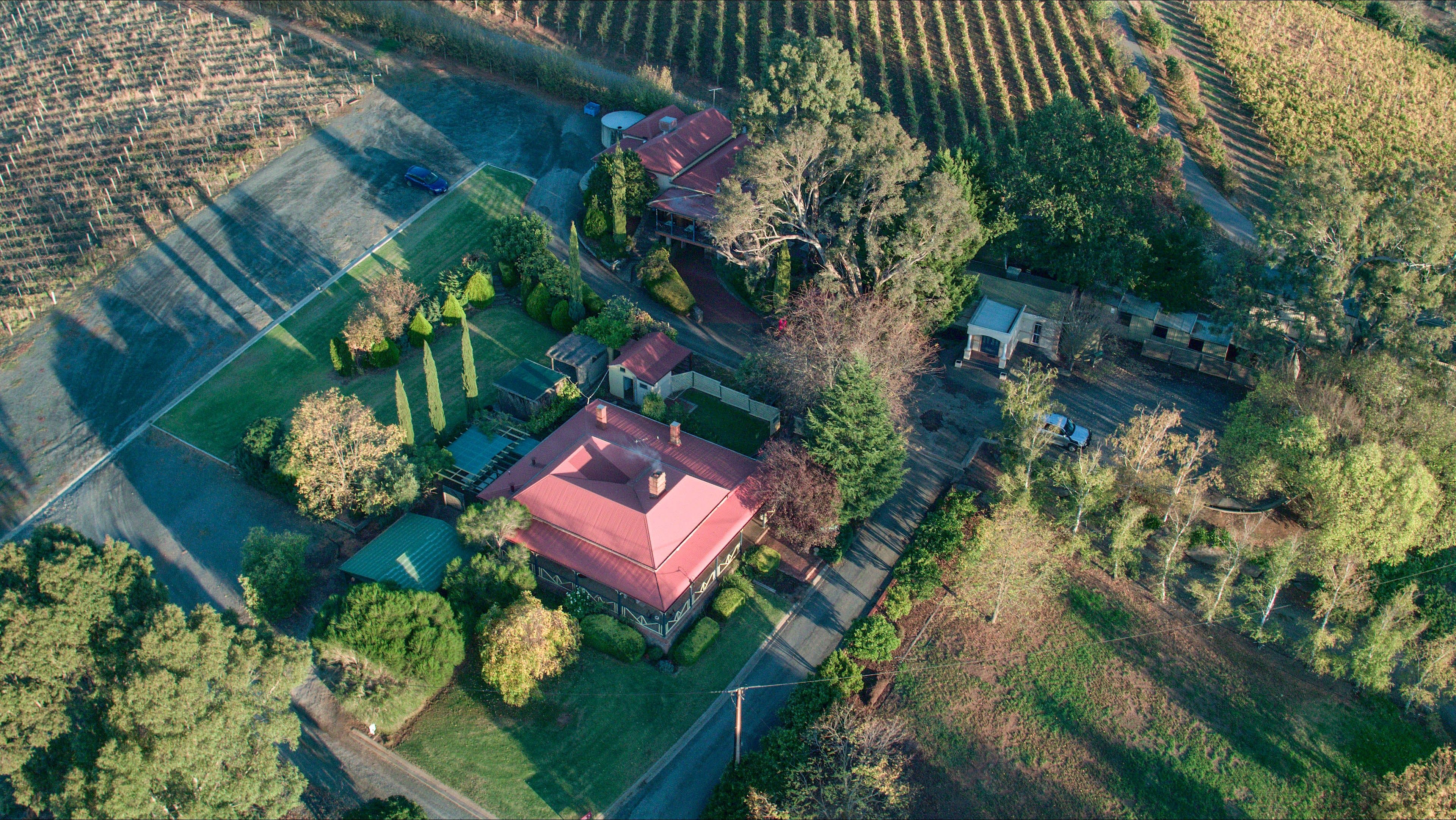 Mt Bera Vineyard Cottage BnB - Tourism Caloundra