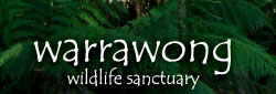 Warrawong Wildlife Park - Tourism Caloundra