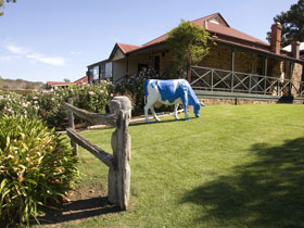 Longview Vineyard - Tourism Caloundra