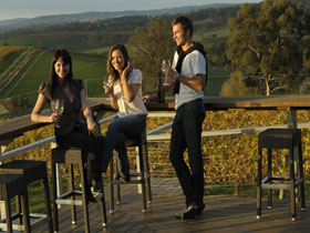 The Lane Vineyard - Tourism Caloundra