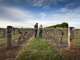 Coonawarra Wineries Walking Trail - Tourism Caloundra