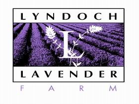 Lyndoch Lavender Farm and Cafe - Tourism Caloundra