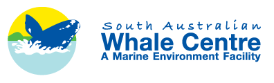 South Australian Whale Centre - Tourism Caloundra