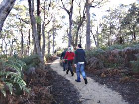 Bridport Walking Track - Tourism Caloundra