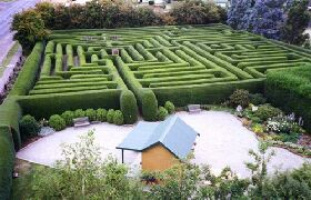 Westbury Maze and Tea Room - Tourism Caloundra