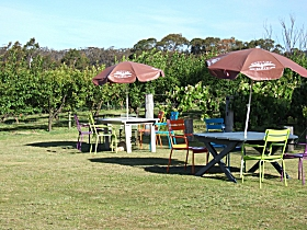 Cerise Brook Orchard  Family Golf - Tourism Caloundra