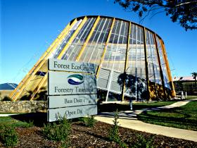 Forest EcoCentre - Tourism Caloundra