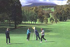 Deloraine Golf Course - Tourism Caloundra