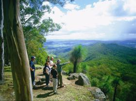 Gold Coast Hinterland Great Walk - Tourism Caloundra