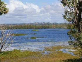 Lake Barfield - Tourism Caloundra