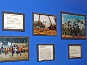 Town Hall Photographic Display