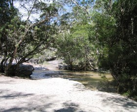Davies Creek National Park and Dinden National Park - Tourism Caloundra