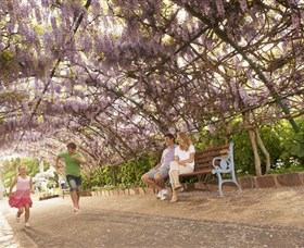 Laurel Bank Park - Tourism Caloundra