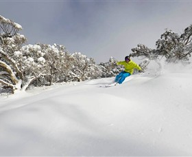 Mt Buller and Mt Stirling Alpine Resort - Tourism Caloundra
