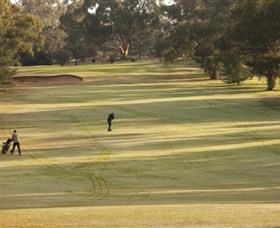 Cohuna Golf Club - Tourism Caloundra