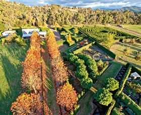 High Country Maze - Tourism Caloundra