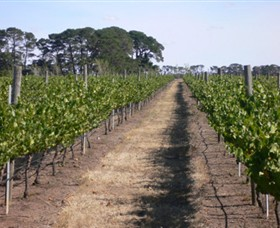 Mount Beckworth Wines - Tourism Caloundra