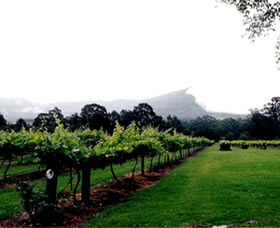 Cambewarra Estate Wines - Tourism Caloundra