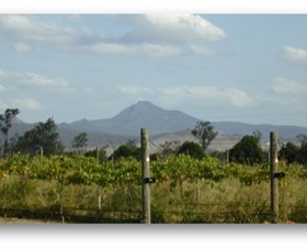 Ironbark Ridge Vineyard - Tourism Caloundra