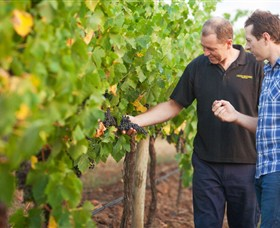 Fratin Brothers Vineyard - Tourism Caloundra