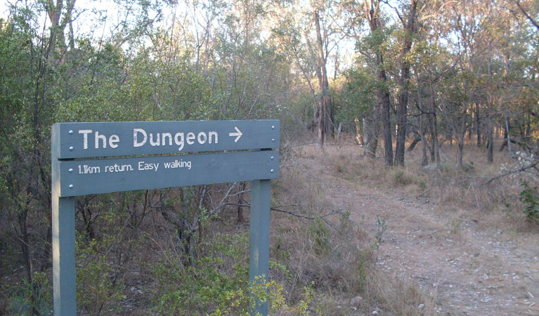 Dungeon lookout - Tourism Caloundra