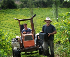 Kellybrook Winery, Kelly Brothers Cider & Riders Brew Co.