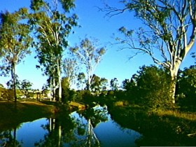 Dingo Creek Park - Tourism Caloundra