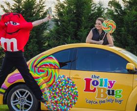 The Lolly Bug - Tourism Caloundra
