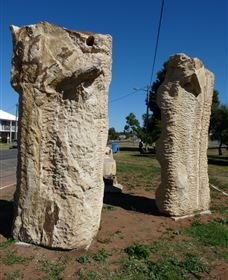 Fossilised Forrest Sculptures - Tourism Caloundra