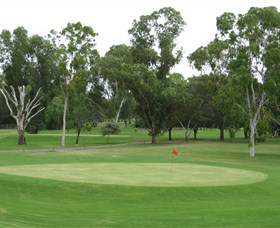 Moree Golf Club - Tourism Caloundra