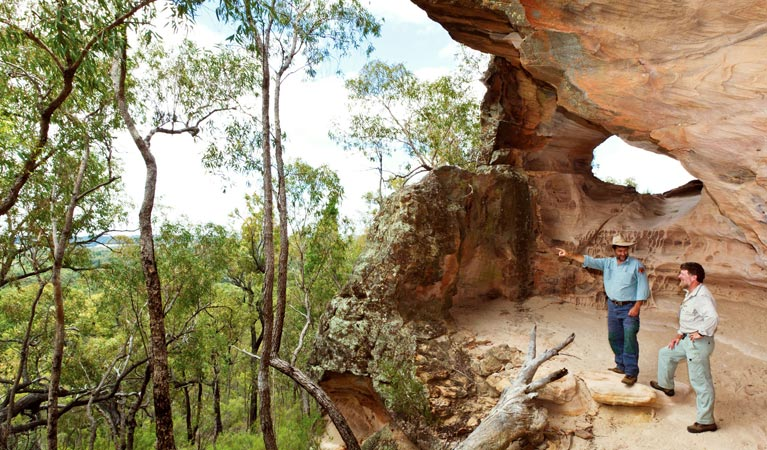 Pilliga National Park - Tourism Caloundra