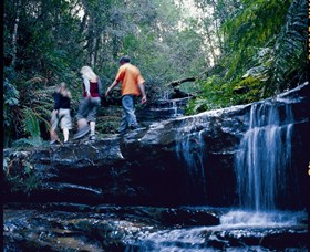 South Lawson Waterfall Circuit - Tourism Caloundra