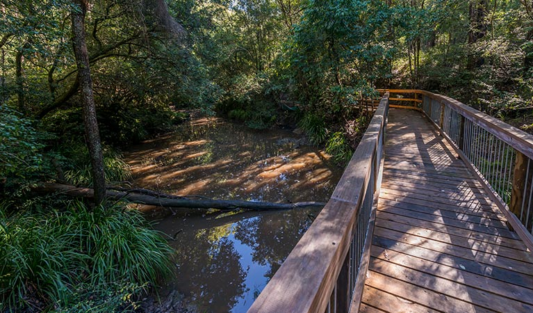 Ms Kellys walking track - Tourism Caloundra