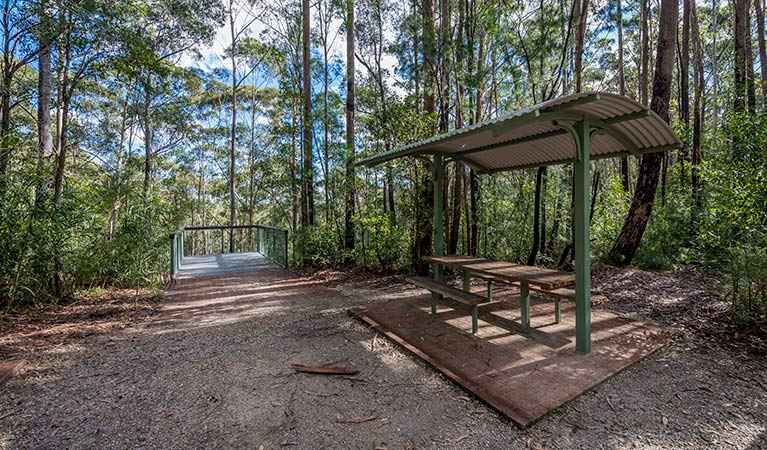 Big Nellie lookout and picnic area - Tourism Caloundra