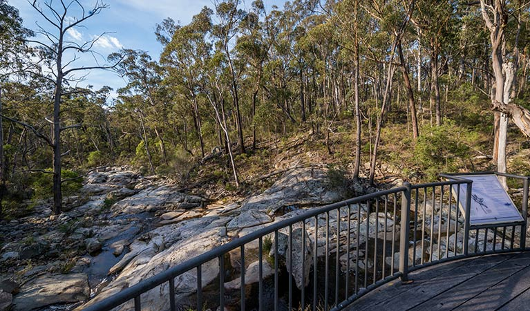 Myanba Gorge walking track - Tourism Caloundra