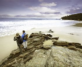 Wilderness Coast Walk - Tourism Caloundra