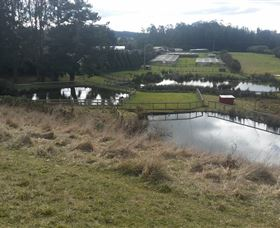 Guide Falls Farm - Tourism Caloundra